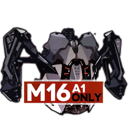 M16A1's Special Equipment