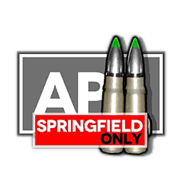 Springfield's Special Equipment
